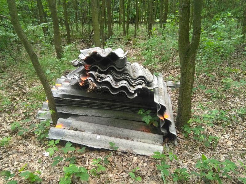Galeria Likwidacja dzikiego wysypiska materiałów zawierających azbest Gdynia